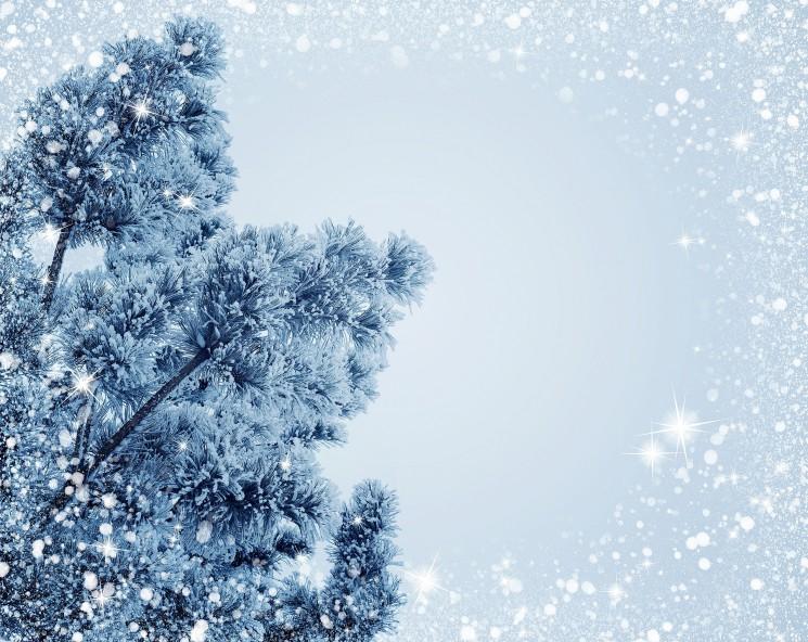 Christmas Fiction Storytelling Contest Winner: 'Bubbles', by Punvi Kalia