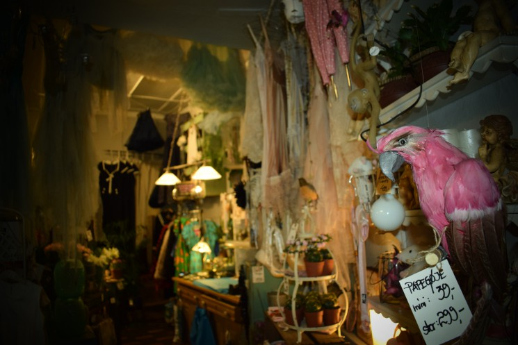Discover a little shop of wonders in the middle of Aarhus